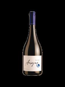 Rượu Vang Chile Amayna Pinot Noir